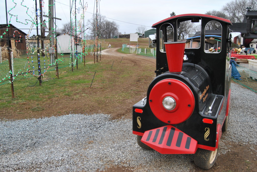 A little kid train for the smaller children at Arasapha Farms.